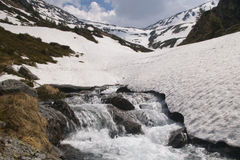 Fast mountain river in romanian carpathians. In spring snow melting Stock Images