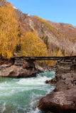 Fast mountain river Stock Photos