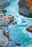 Fast mountain stream current blue among rocks autumn Royalty Free Stock Images