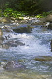 Fast mountain stream in the spray Royalty Free Stock Photo