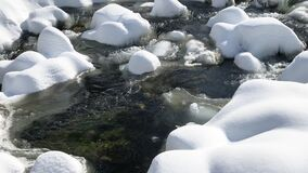 Fast mountain stream among spring a thaw in the forest stock footage