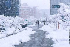 A fast-moving snowstorm arrived in the Korea area. A fast-moving snowstorm arrived in the South Korea area royalty free stock images