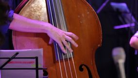 Fast Playing Double Bass. At a jazz concert closeup