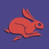 Fast rabbit 2 Royalty Free Stock Photos