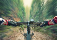 Fast ride in summer forest. Sport and active life concept royalty free stock images
