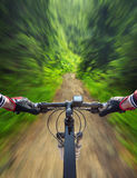 Fast ride in summer forest. Sport and active life concept stock image