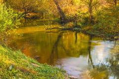 Fast river in autumn forest. Stock Images