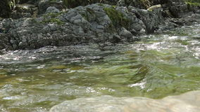 Fast River Close Up stock video footage