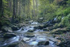 Fast river in the forest royalty free stock photography