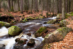 Fast river in Harz mountains Royalty Free Stock Photo