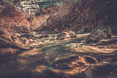Fast river Royalty Free Stock Photos