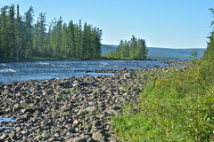 Fast river in the national Park. Stock Photo