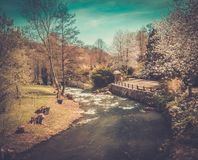 Fast river Stock Images