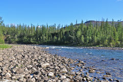 Fast river on the Putorana plateau. Stock Photos