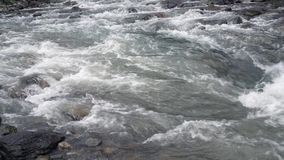 Fast river stream. Water flow in wild river stream.Flowing stream water stock footage