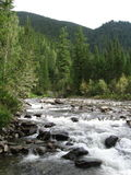 Fast river. The Fast river in Syberia Stock Photography