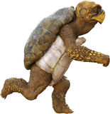 Fast Running Cartoon Turtle Isolated Stock Images