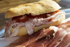 Fast sandwich for brunch Royalty Free Stock Photo