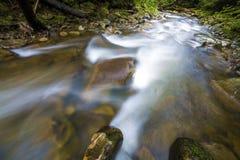 Fast som fl?dar till och med den l?sa gr?na skogfloden med kristallklart sl?tt silkeslent vatten som faller fr?n stora v?ta stena royaltyfria bilder