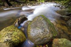 Fast som fl?dar till och med den l?sa gr?na skogfloden med kristallklart sl?tt silkeslent vatten som faller fr?n stora v?ta stena royaltyfri bild