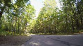 Fast som kör till och med höstskogvägen arkivfilmer