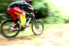 Fast speed mountain bike. Mountain biker riding in a fast speed Royalty Free Stock Photography