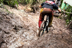 Fast speed mountain bike Royalty Free Stock Images