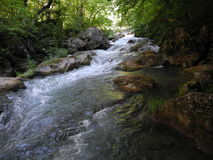 Fast stream. In the Crimean mountains royalty free stock photography