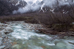 Fast stream in a mountain river. Stock Photos