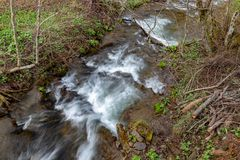A fast stream in mountainous terrain. Water flowing in the river shown in a long exposure. Season of the spring royalty free stock image