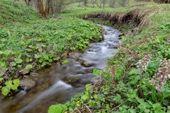 A fast stream in mountainous terrain. Water flowing in the river shown in a long exposure. Season of the spring royalty free stock photos