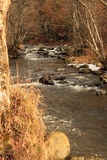 Fast stream with rocks. Fast stream of Bistra in Romania, Mures county with rocks and trees Stock Photography
