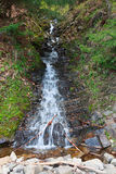 Fast stream in the spring forest Stock Photo