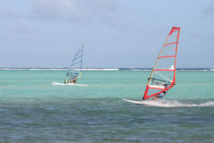 Fast surfers. Windsurfers going fast in tropical bay stock image