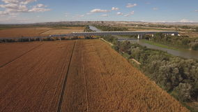 Fast train enters bridge near cultivated corn field and river stock video footage