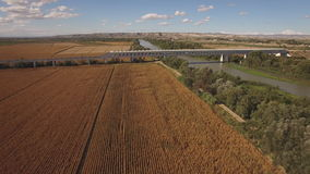 Fast train enters bridge near cultivated corn field and river stock video