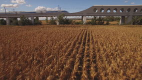Fast train enters bridge near cultivated corn field stock footage