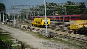 Fast train. At Monselice station stock video