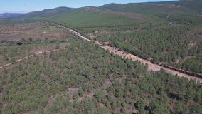 Fast train in the middle of the pine tree forest stock video footage
