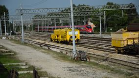 Fast train in the rail. Fast people train in the rail stock footage