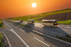 Fast travel buses in a row on the highway at sunset. Modern buses in left driving on the freeway at beautiful sunset. Transport and travel scene on the motorway Royalty Free Stock Image