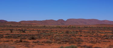 Fast Travels, Slow Evolution. Photograph taken from a vehicle travelling at high speed through Outback Australia looking over towards the ancient Flinders Ranges royalty free stock photography