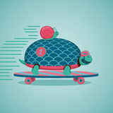 Fast turtle and snail. Slow but fast.Turtle and snail are riding on a skateboard Stock Photography