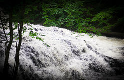 Fast Water Flow Stock Photos
