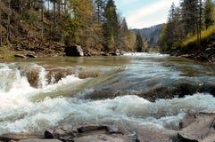 Prut river. Yaremche, Ukrainian Carpathians. royalty free stock photo