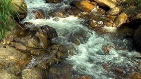 Fast water flow in rocky river in mountain close up. Rapid water stream in mountain river. Beautiful landscape wild. Nature stock footage