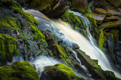 Fast water stream Stock Images
