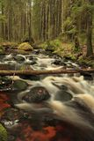 Fast white river Royalty Free Stock Photos