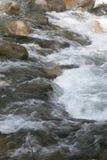 Fastar flödande vatten - Lynn Canyon, norr Vancouver Fotografering för Bildbyråer