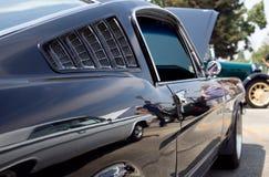 Fastback Mustang Stock Photos